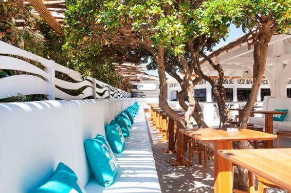 plantas-terraza-restaurante