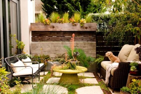 como-decorar-tu-terraza-plantas